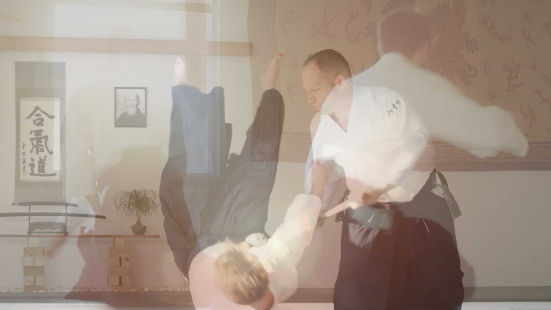 360 Visuals Aikido feature