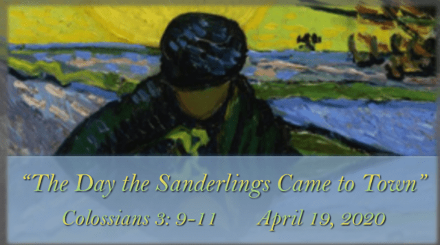 Sermon - The Day the Sanderlings Came to Town - Colossians 3: 9-11