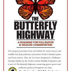 Order Your Butterfly Highway Sign