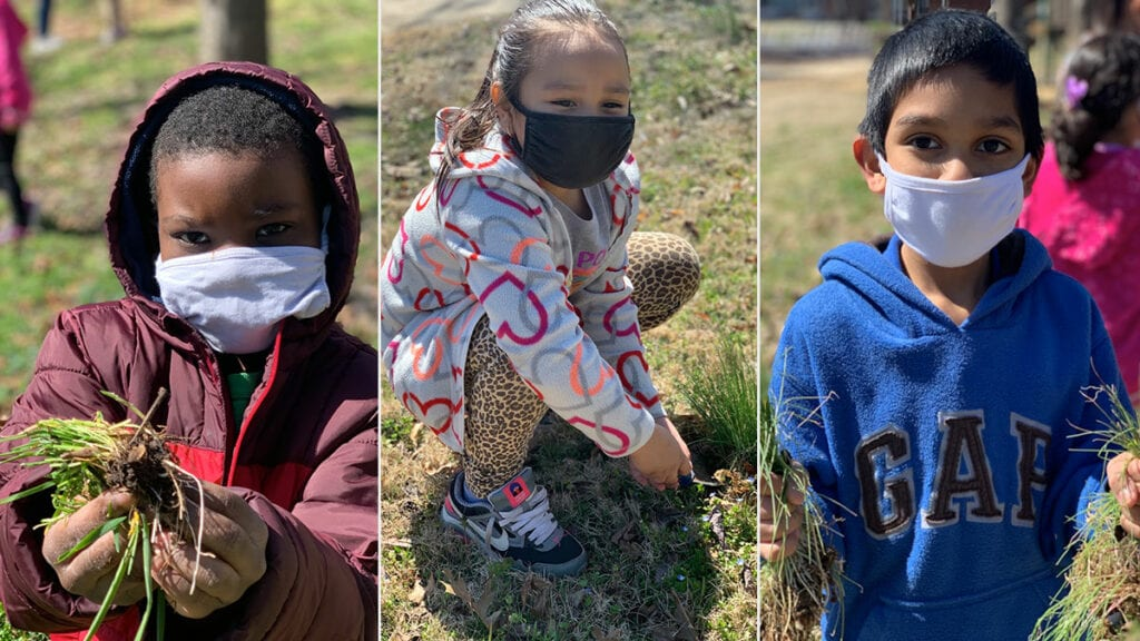 Millbrook Students Get Outside and Restore Habitat on Campus