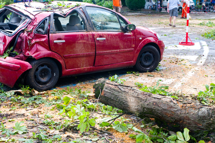 A Tree Fell on Both of My Vehicles on the Auto Policy; Do I Have to Pay a Separate Deductible for Each?