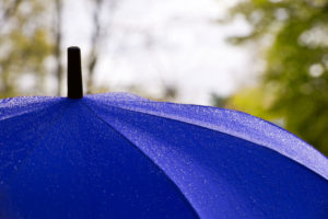 Umbrella Insurance - North Carolina